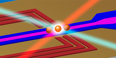 Trapped Ions Make Impeccable Qubits