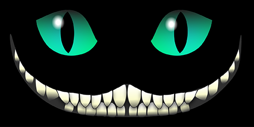 Synopsis: A Single-Photon Cheshire Cat