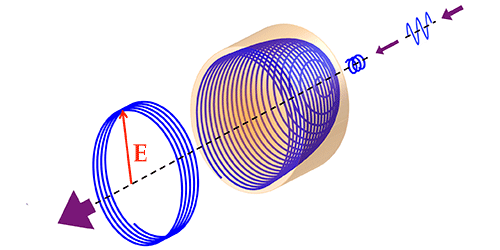 Synopsis: A Circularly Polarized Laser for All Labs