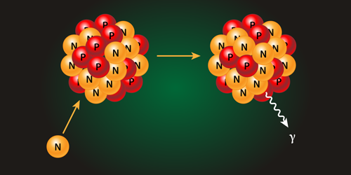 Synopsis: Neutron Capture Constraints