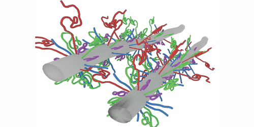 Synopsis: Proteins as Shock Absorbers