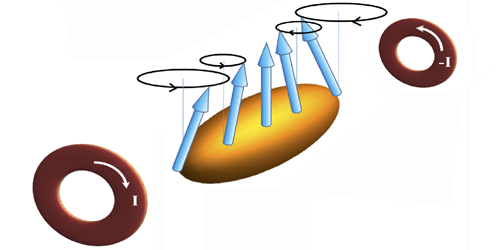 Synopsis: Collective Spin Behavior in an Ultracold Quantum Gas