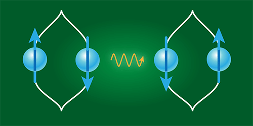 Synopsis: A Test of Gravity's Quantum Side