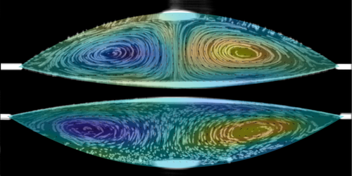 Synopsis: Gravity-Driven Flows in Two-Fluid Drops