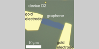 Image for Measurement of the Electronic Thermal Conductance Channels and Heat Capacity of Graphene at Low Temperature